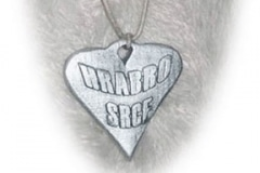 Ogrlica - privjesak srebro